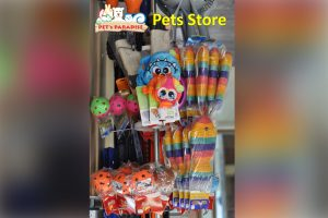 Pet-Store-07